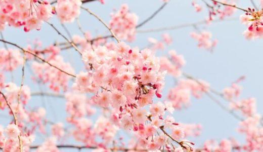 英語で表現できない日本人の「反省する」メンタリティ