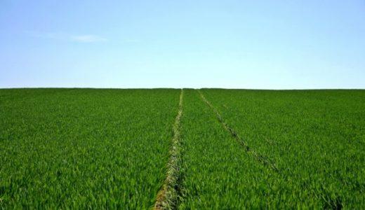環境の変化が成長への一番の近道である